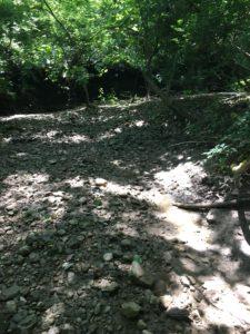 Dry Run Creek