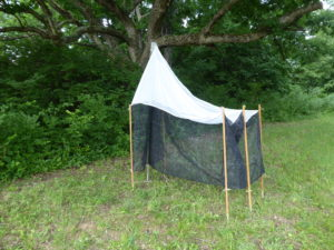Malaise trap set up and awaiting flying insects